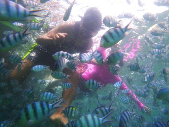 underwater bangka belitung