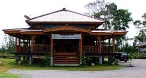 bangka-botanical-garden-bbg
